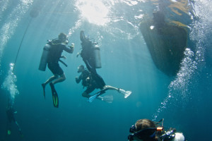 Santa Catalina Dive Courses