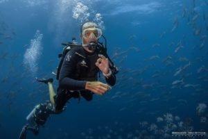 coiba-island-diving
