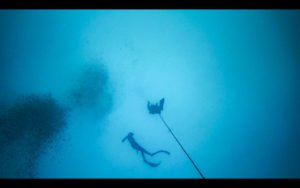 free-diving-panama