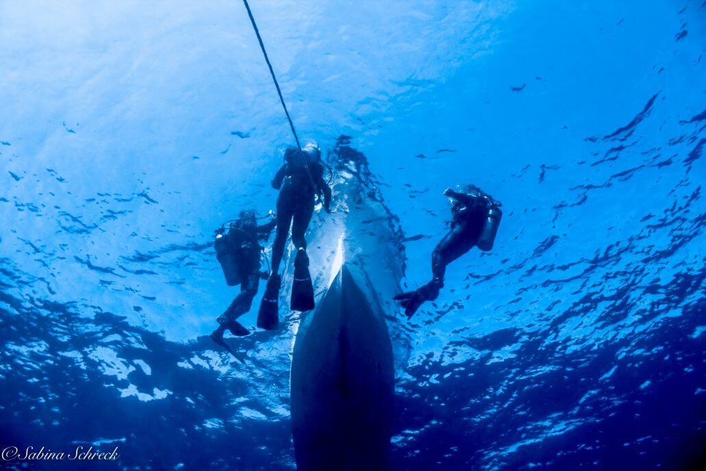 boat diving in COiba